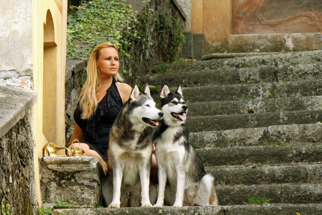 Auf einer vermoosten Stiege sitzt eine junge elegante Frau mit einem schwarzen Kleid mit zwei Husky. Denkt Sie über eine Kastration der Rüden nach?