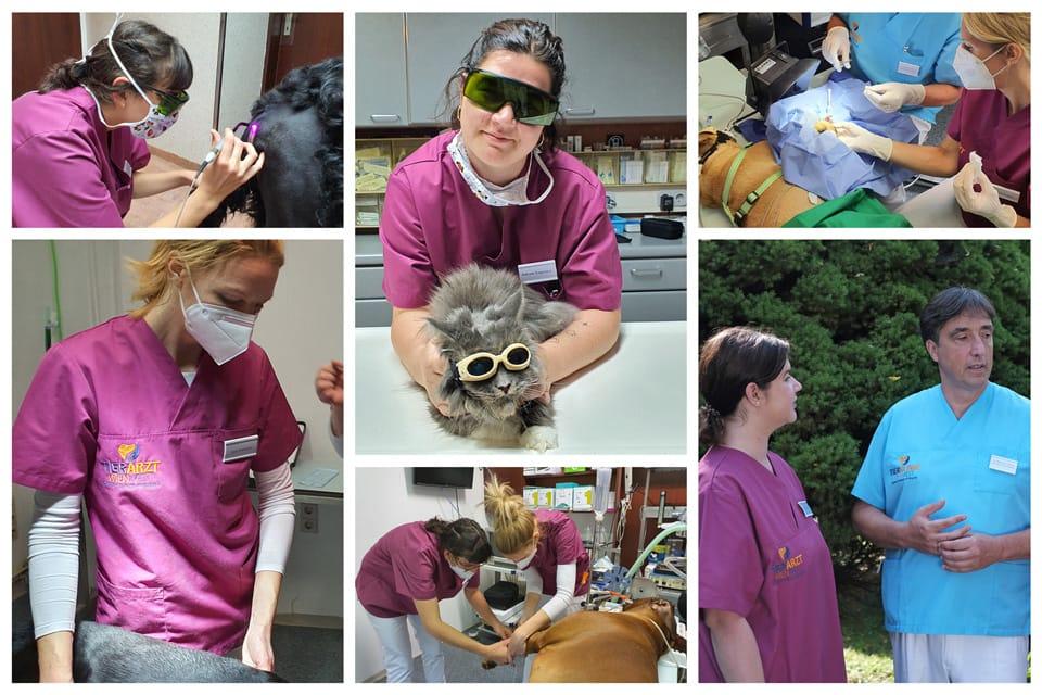 Das Team Tierarzt Wien West Maurizio Colcuc, Nathalie Gregoritsch, Valentina Sagmeister, Doris Kratochwil